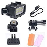 Venidice 40m 130ft Rechargeable Dimmable Waterproof Video LED Light 6W 20 LEDs 700LM with 1900mAh for Gopro HTC XIAOYI SJ5000 SJ6000 & other Action Camera &DSLR Camera