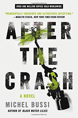After the Crash: A Novel