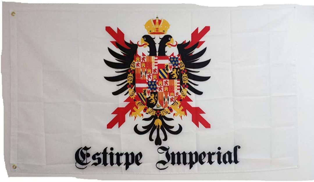 Estirpe Imperial Bandera Cruz de Borgoña Carlos V 150x90cm: Amazon ...