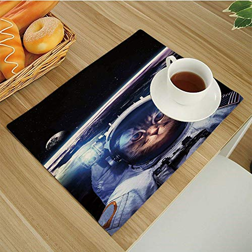 BESSIROPDE Colour Print Placemats Set,Dining Table,Heat-Resistant Table Mats,17.5