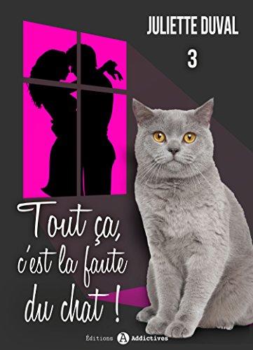 Tout ça, c'est la faute du chat ! - 3 (French Edition)