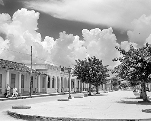 Posterazzi Poster Print Collection 1950s Street Scene with Trees in the Central Boulevard Pinar Del Rio Province Cuba Vintage, - Scene 1950's Street