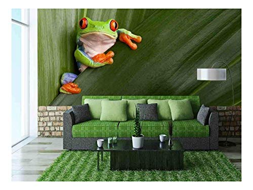 Tree Frogs Mural - wall26 - Curious Red Eyed Tree Frog Hiding in Green Background Leaves - Removable Wall Mural | Self-Adhesive Large Wallpaper - 100x144 inches