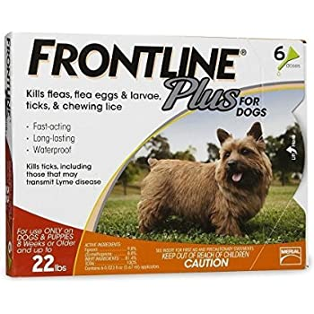 Frontline Plus 6pk Dogs 0-22 Pounds (orange box)