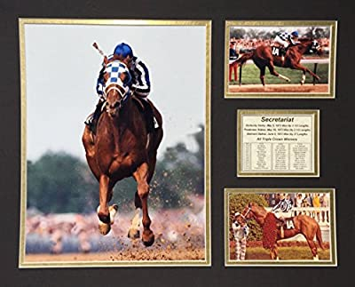 "Secretariat 16"" X 20"" Unframed Matted Photo Collage By Legends Never Die, Inc."