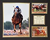 Secretariat 16'' X 20'' Unframed Matted Photo Collage By Legends Never Die, Inc.