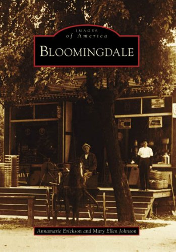 Bloomingdale  Images Of America  Illinois