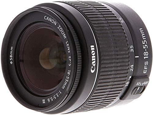 Canon EOS 2000D Rebel T7 Kit with EF-S 18-55mm f/3.5-5.6 III Lens + Canon 75-300 Lens+ Accessory Bundle +TopKnotch Deals Cloth 51gv5N  omL