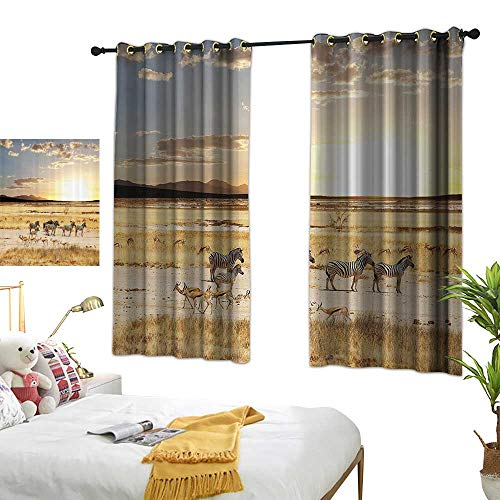 Thermal Insulated Drapes for Kitchen/Bedroom Safari Decor Collection Zebras with Their Striped Coats in Savannahs Sunset Adventure Africa Wild Safari Photo Darkening and Thermal Insulating 63