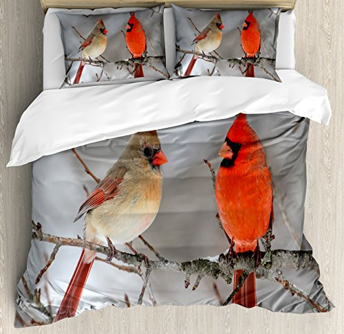 Lunarable Bird Duvet Cover Set Queen Size, Pair of Northern Cardinal Birds on a Tree Ornithology Avian Wildlife Fauna, Decorative 3 Piece Bedding Set with 2 Pillow Shams, Vermilion Tan Beige