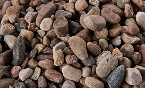 Natural Aquarium Gravel Pebble for Freshwater or Saltwater Tanks and Ponds (Ironwood)