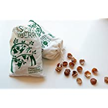 SOAP NUTS Soap Berries (250gram) 75-100 Loads of Laundry