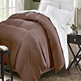 Blue Ridge Home Fashion Microfiber Down Alternative Comforter, King, Chocolate