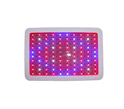 LED Grow Light 300W Chips Dobles Full Spectrum Grow Lamp 60LEDs Cadena de Margaritas con suspensión