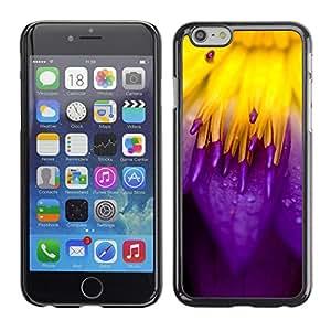 LECELL--Funda protectora / Cubierta / Piel For iPhone 6 -- Rojo y púrpura --