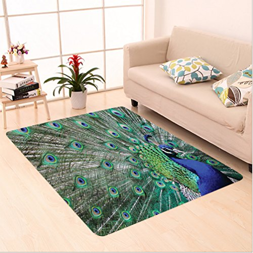 Nalahome Custom carpet wl Feathers Decor Collection Majestic Peacock Picture Pattern Accessories Green Blue Brown Olive area rugs for Living Dining Room Bedroom Hallway Office Carpet (4' X (Comfort Shag Mint Green Rug)