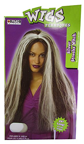 Hair Wig Costumes Accessory (Silver Streaks Wig Adult Halloween Costume Accessory)