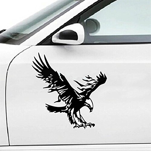 Auto Car Decal Graphic - 2