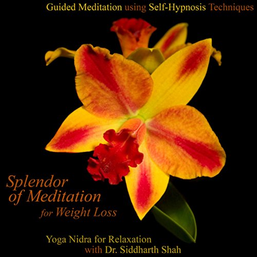 Guided Meditation Using Self H...