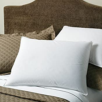 Amazon Com Extra Soft Down Pillow Great For Stomach