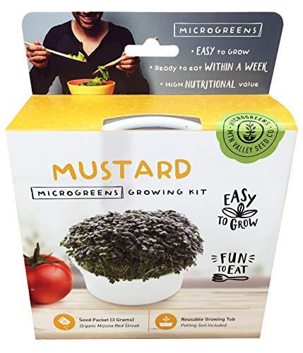 Mini Microgreens Growing Kit - Mizuna Mustard - Grow Your Own Organic Gourmet Micro Greens Indoors: Salad, Sandwich & Garnish - Easy & Fun - Great Gift or Stocking Stuffer (Red Streaks Mizuna Mustard)