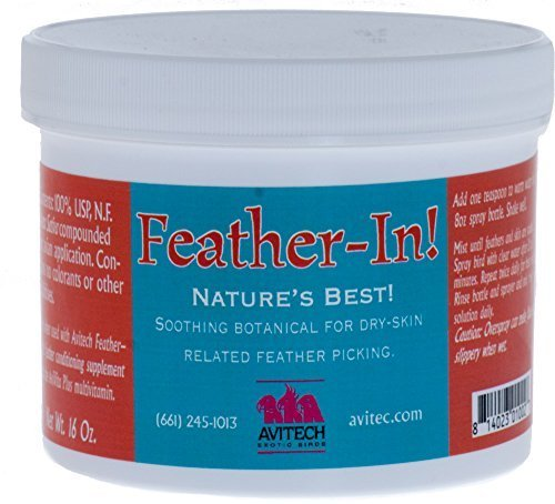 Avitech Feather-In Anti-Pick Powder for Birds 16oz by Avitech