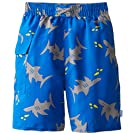 i play. Baby Boys' Pocket Trunks with Built-In Reusable Absorbent Swim Diaper, Royal Shark, 12 Months