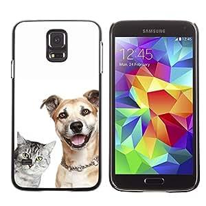 Be Good Phone Accessory // Dura Cáscara cubierta Protectora Caso Carcasa Funda de Protección para Samsung Galaxy S5 SM-G900 // Cat Dog Shorthair Friendly Grey Brown