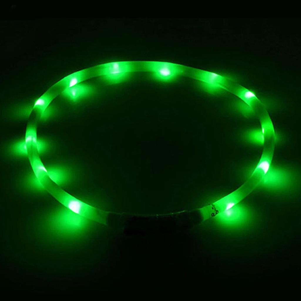 Collier de sécurité pour animal domestique à LED clignotante rechargeable par USB DAEDALUS