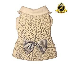 Stepevoli Winter Dress with Grey Brocade for Dogs – Comes in White Colour and N2 | G6 Size
