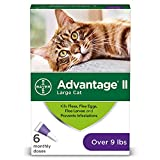 Bayer Advantage II for Large Cats Over 9 lbs - 6 Pack