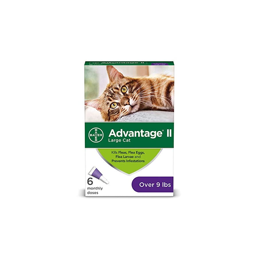 Advantage II Flea prevention Large Cats, over 9 lbs, 6 doses (Packaging May Vary)
