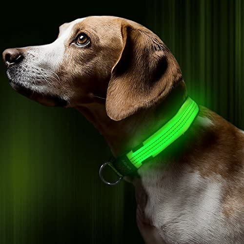 BSEEN Rechargeable Glowing Reflective Adjustable