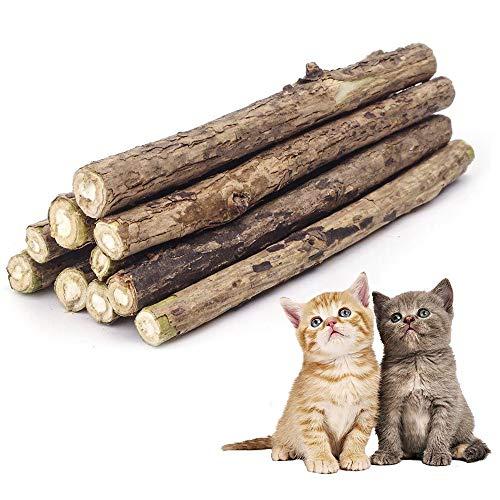 CZ Store®- Matatabi Kaustangen |10 ST|✮LEBENSLANGE GARANTIE✮- Katzenminze biologisch natürlich für den Zahnschutz…