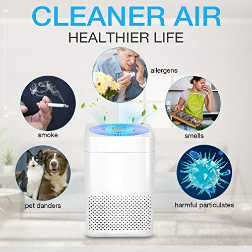 TRUSTECH Air Purifier - True HEPA Air Purifier for Home w/Auto Mode, Noiseless Air Filter System Removes Smoke, Odor, Pet Dander, Pollen & Dust, Covering 215 ft² for Bedroom, Kitchen & Office
