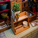 UXTIS Three on A Single Grid Storage Box Home Furnishing Wood Display Box