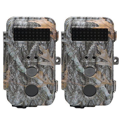 DIGITNOW Trail Camera 16MP HD Waterproof Game Camera, Wildlife Hunting Scouting Surveillance Camera with 40Pcs IR LED Infrared Night Vision Up to 65FT /20M (2Pack)