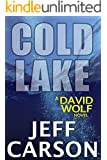 Cold Lake: David Wolf Mystery (David Wolf Mystery Thriller Series Book 5)
