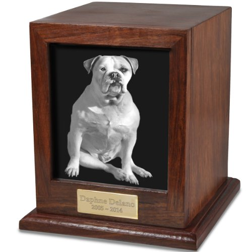 dog urns amazon