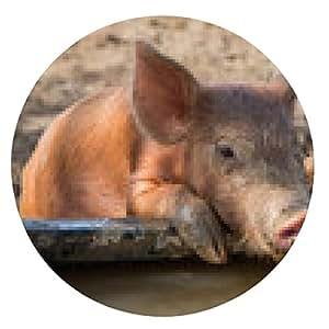 alfombrilla de ratón Bebé conejillo de agua potable - ronda - 20cm