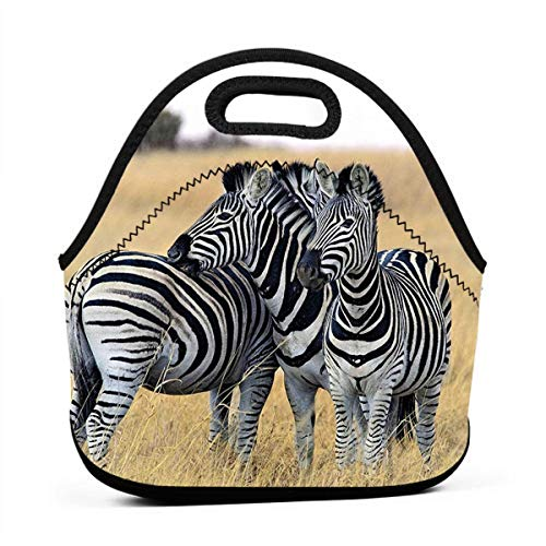 DJUQBWKP Zebras On South Africa Safari Portable Lunch Bags,Reusable Picnic Bag -for Adults, Women, Girls, School Children - Suitable for Travel, Picnic, Office (Small)