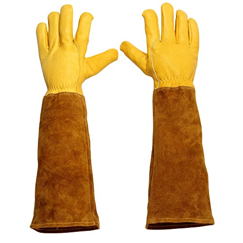 Sportmars Cowhide Leather Gardening Gloves for Men and Women Yard Work Thorn & Cut Proof Long Gauntlet (S M L)