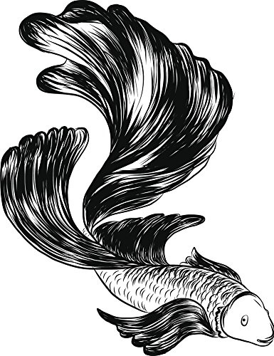 Amazon Com Pretty Black And White Betta Fish Pen Sketch Drawing