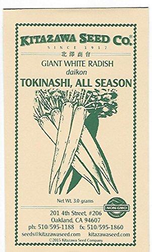 Giant White Radish - Tokinashi (All-Season) - 3.0 Grams