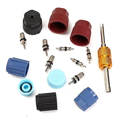 theco Auto Klimaanlage Ventil Kerne A//C System Kappen mit einem Entferner Tool