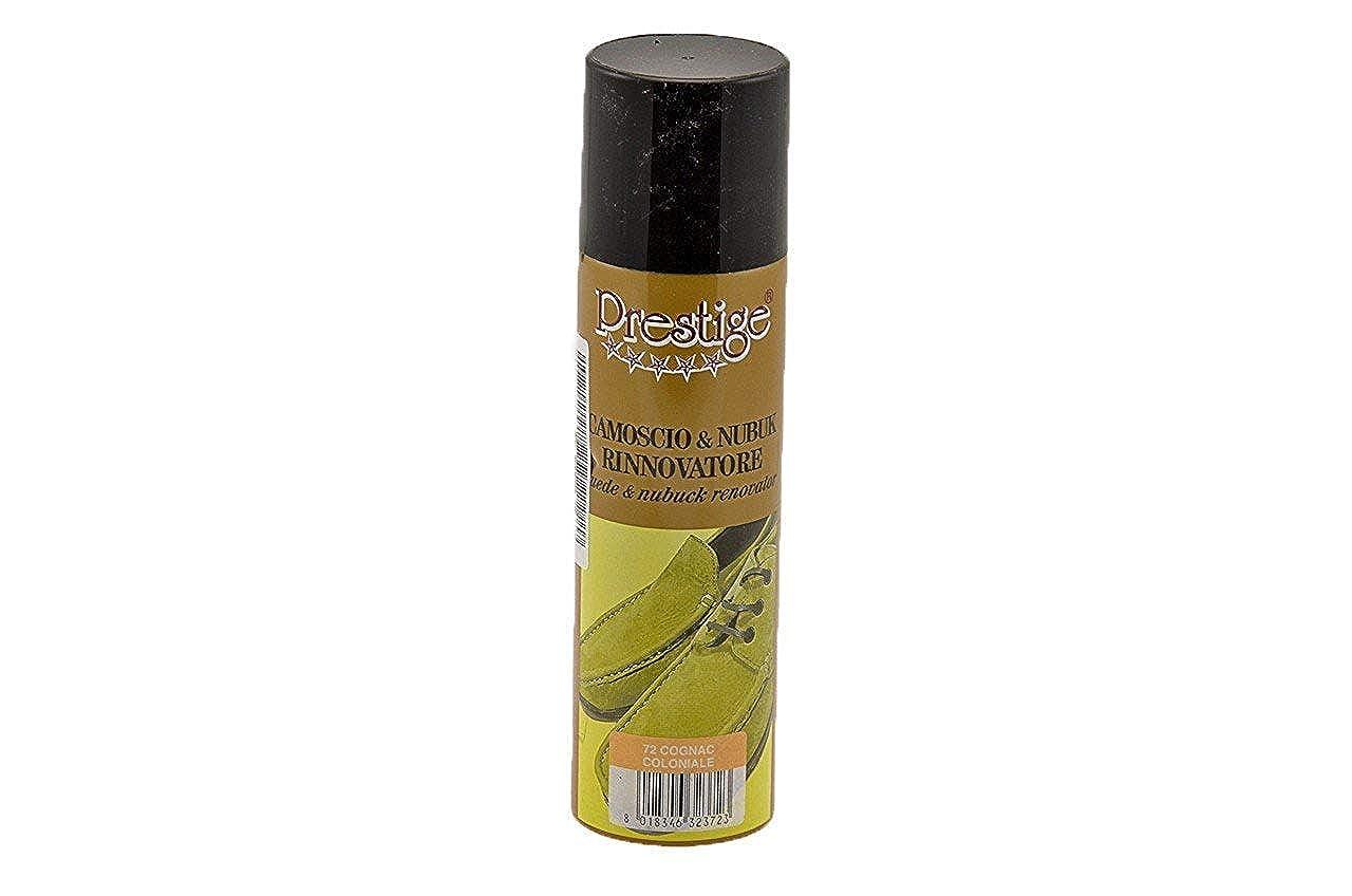 RINNOVATORE Di COLORE Spray Per SCARPE In CAMOSCIO E NABUK