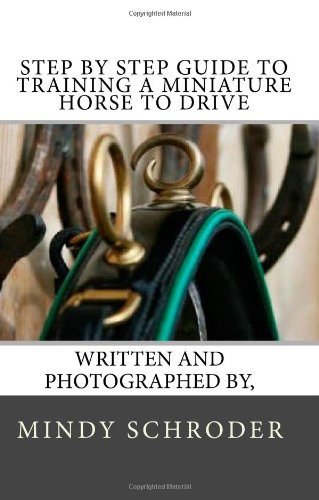 Step By Step Guide to Training A Miniature Horse To Drive