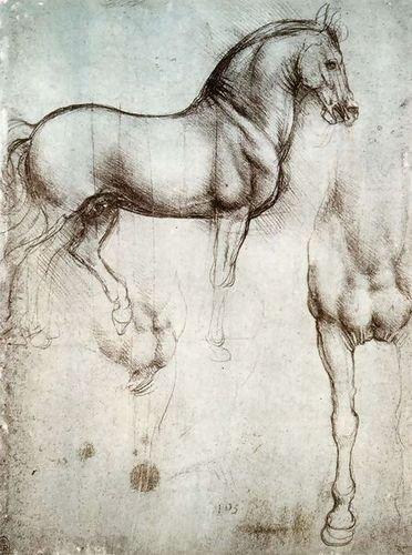 Leonardo Da Vinci Study of Horses 72x97 72x97  B00G2MAUO6
