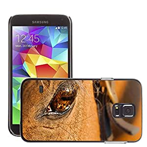Cas Coq Case Cover // M00146796 Caballo Ojo de Animal Cabeza de caballo // Samsung Galaxy S5 S V SV i9600 (Not Fits S5 ACTIVE)