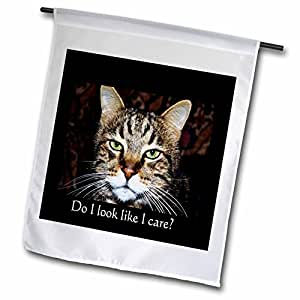 3dRose fl_22503_1 Do I Look Like I Care a Cat with Expression Garden Flag, 12 by 18-Inch